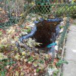 Schlammsauger für Ihren Gartenteich