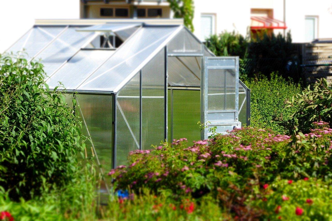 Gewächshaus für Hobbygärtner für Nutz- und Zierpflanzen